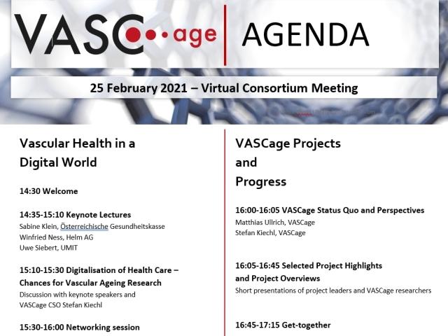 VASCage Consortium Meeting